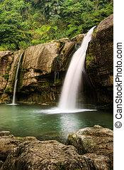 Jungle waterfall - Jungle with beautiful waterfall and rock...