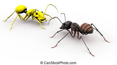 Ant Talking To Yellow Happy Face Ant - An ant looking at a...