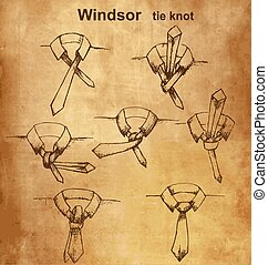 Vector tie and knot instruction - Vector tie and knot...