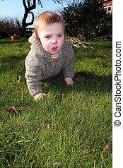 child explore garden nature - child in garden. baby or...