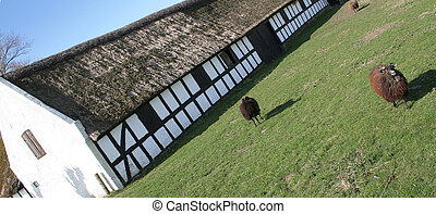 farm house danish denmark - Traditional danish farm house or...