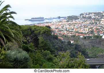 Dramatic Madeira Hillside View and Red Roof Tops - Dramatic...
