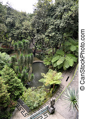 Monte Palace Lush Green Tropical Gardens - View looking down...