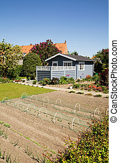 allotment garden house - allotment with garden and soil with...