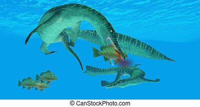 Reptil, marina,  mesosaurus