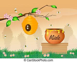 honey - illustration of honey