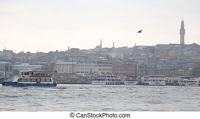 sea gull and landscape Golden Horn in Istanbul. Turkey