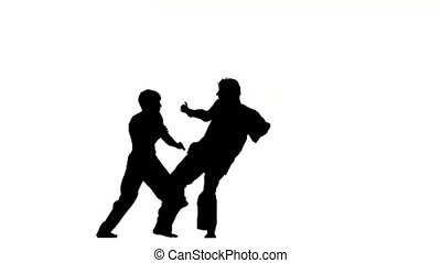 sparrynh taekwondo and karate on a white background, blows...