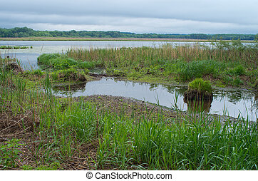 Gun Club Lake and Marshes - minnesota valley wildlife refuge...