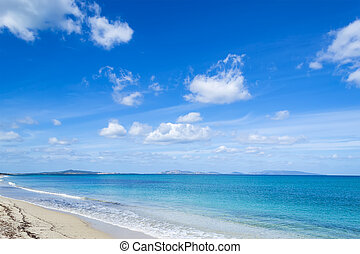 Fiume Santo beach under soft clouds. Shot in Sardinia, Italy