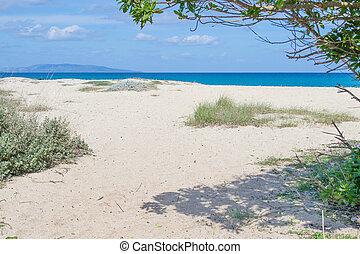 Fiume Santo beach on a clear spring day, Sardinia