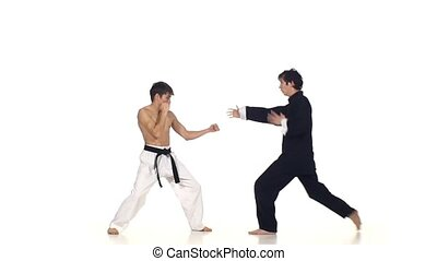 Sparrynh taekwondo and wushu or karate man on a white...
