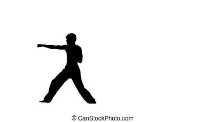 Man training taekwondo or karate, Silhouette, Slow motion -...
