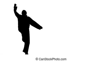kung fu, karate, martial arts, Silhouette, Slow motion -...