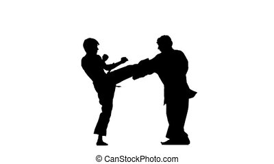 sparrynh taekwondo and karate, blows from each other, Silhouette, Slow motion