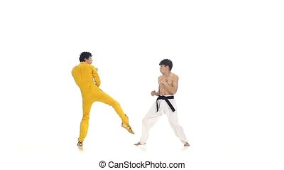 karate and taekwondo sparring: strikes Slow motion, One of...