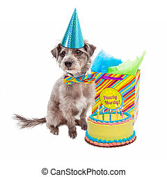 Happy Birthday Party Dog - Cute little terrier dog wearing a...