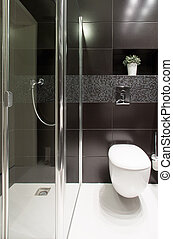 Shower and lavatory - Close-up of shower and lavatory in...