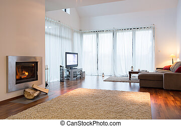Cozy living room - Spacious modern cozy living room with...