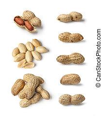 Set of Peanut isolated - Set of Peanuts isolated on white...