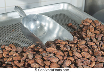 Cocoa beans in fabric