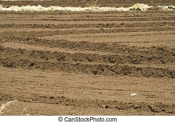 tilled farm field