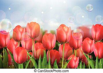 Pink tulips flowers in the garden