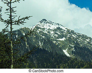 Mountains in the woods and snow are surrounded with clouds