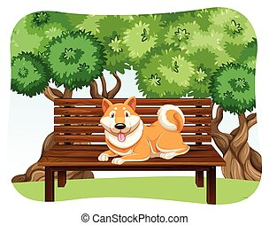 Dog on bench - Dog sitting on the wooden bench in the park