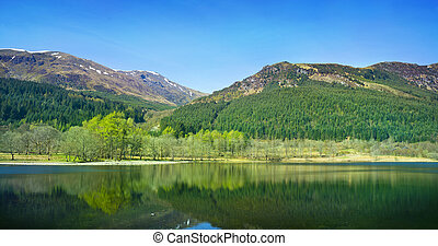 Forest and Mountian Reflections - Scotland, UK