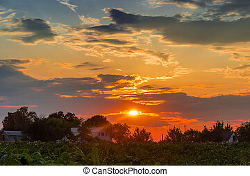 Sunset in the countryside - Sunset on the background of...