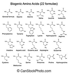 Twenty two biogenic amino acids - chemical formulas, 2d...