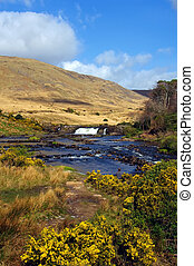 vibrant scenic nature capture in the west of ireland - photo...
