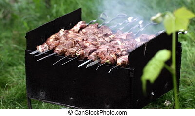 Preparation of a shish kebab on the grill on the lawn in the...