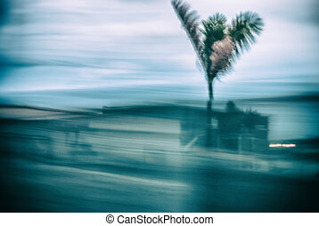 Abstract background motion blur palm leaves in motion during...