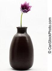 Purple flower in earthenware vessel - A purple flower in a...