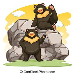 Two playful bears near the big rocks on a white background