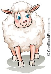 A sheep on a white background