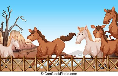 Horses running in a stable