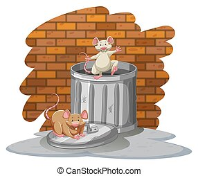 Rats playing with the trashbin near the wall on a white...
