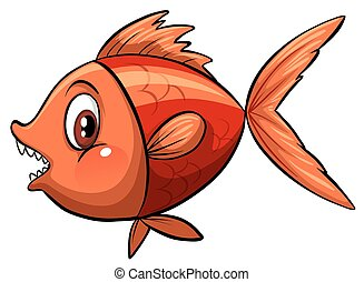 A fish - A colourful fish on a white background