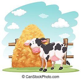 Cow and a pile of haystack near the wooden fence on a white...
