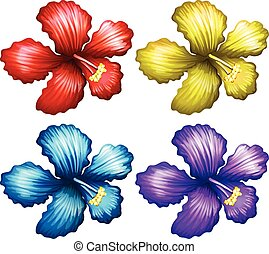 Set of gumamela flowers - Set of colorful gumamela flowers...