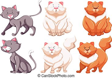 Different specie of cats - Six different specie of cats on a...