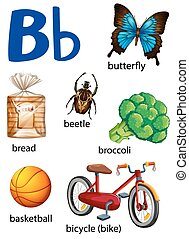 Things that start with the letter B on a white background