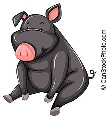 Fat gray pig sitting down on a white background