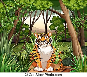 Tiger sitting in a jungle