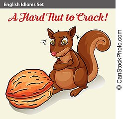 English idom showing a hard nut - Poster showing an English...