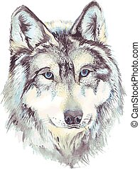 Wolf head profile. Watercolor drawing in vector format