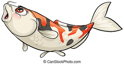 A fish on a white background